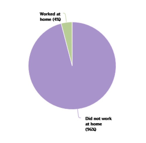 Pie graph of residents working at home in 2015