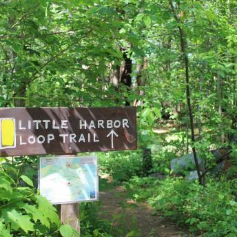 Little Harbor Loop Trail sign