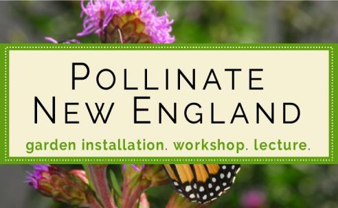 Pollinate New England